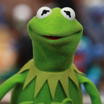 Kermit the Frog - Review - Peace in the City